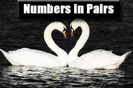 numbers in pairs logo